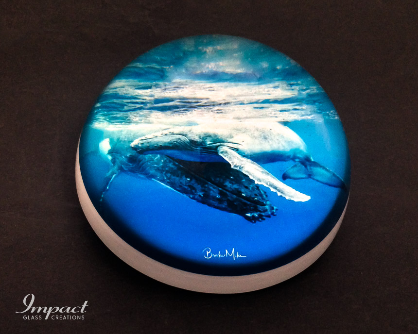 ocean-photography-printed-dome-paperweight-glass-crystal-magnified-2