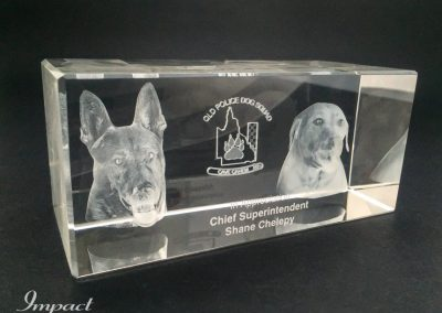 Brisbane Dog Squad