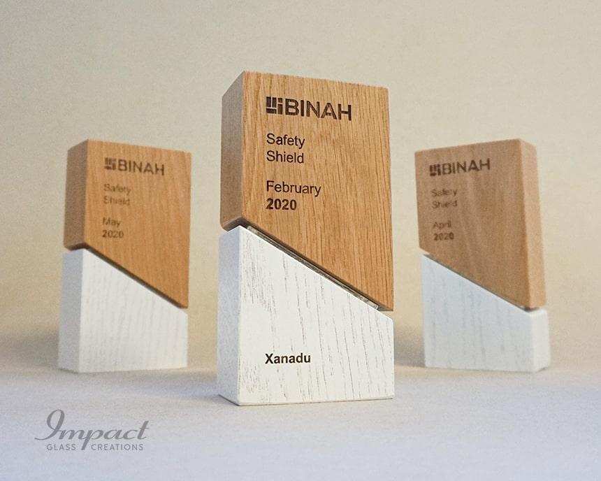 Binah Safety Shield