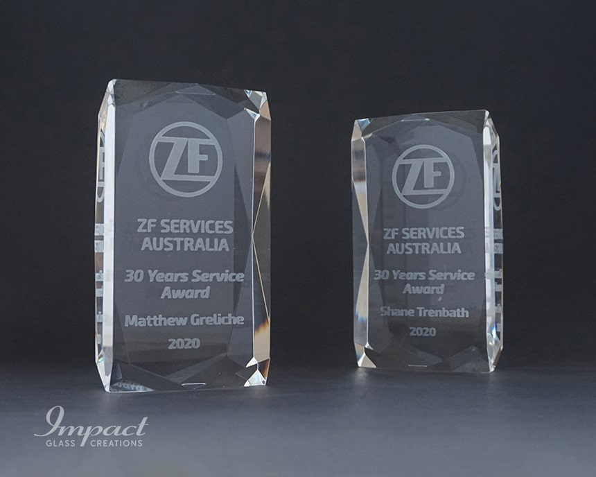 ZF Sevices 30 Years Award