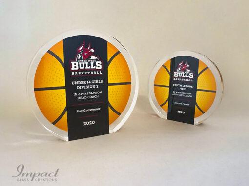 Inner West Bulls Team Appreciation Award